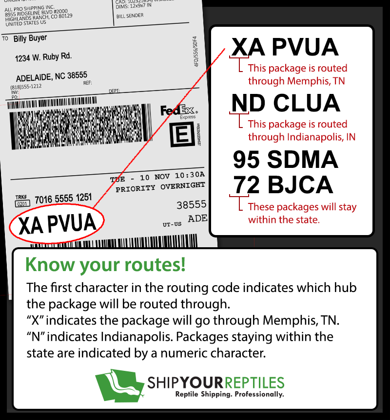 photo regarding Printable Fedex Shipping Labels titled Mail Your Reptiles - Shipping and delivery and Monitoring